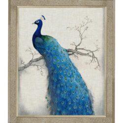 """Tavla """"Peacock Right"""" – Grevinnans Butik & Inredning"""