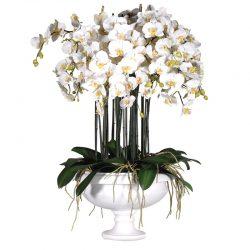 """Växt """"Orchids"""" – Grevinnans Butik & Inredning"""